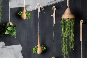 Duurzaam Design Plantenhangers Bij Studio Perspective