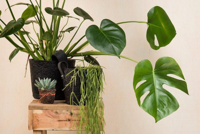 Paper Pot Zwart van Rescued is een zwarte bloempot gemaakt van gerecycled materiaal. Duurzame accessoires bij Studio Perspective.