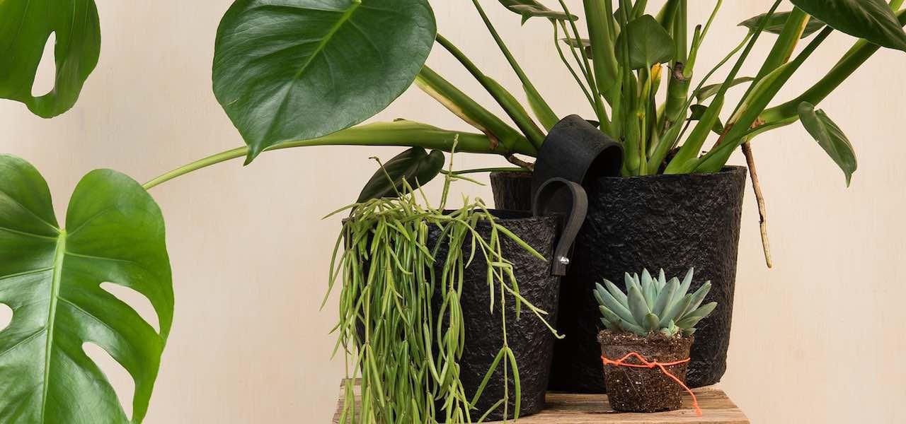 duurzame bloempot van Rescued de Paper Pot gemaakt van gerecycled papier.