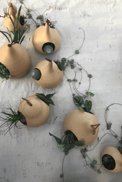 Duurzame plantenhangers groen in huis Studio Perspective